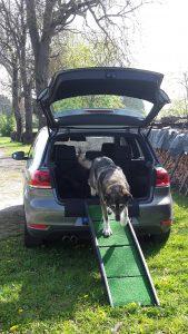 Eine Hunderampe erleichtert den Alltag für Mensch und Tier.