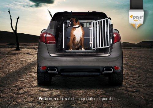 Hundebox von 4pets im Auto