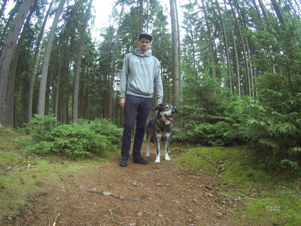 Sonntagsspaziergang im Wald