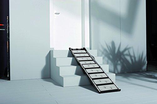 Teleskophunderampe Kleinmetall Zuhause über eine Treppe